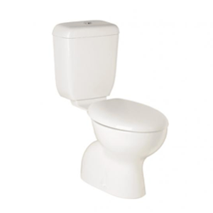 Posh-Dominique-with-Vitreous-China-cistern-$535-installed