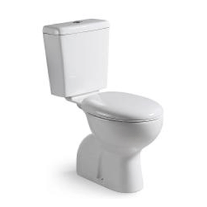 Posh-Solus-with-Vitreous-China-cistern-$605-installed